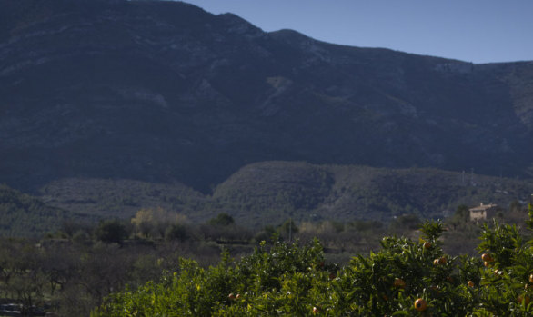 Ruta senderista Alcalalí - Coll de Rates 1 - Alcalalí turismo