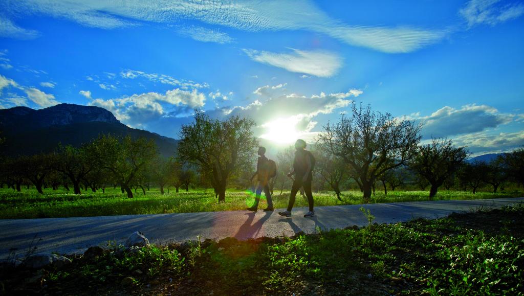 Senderismo - Alcalalí Turismo