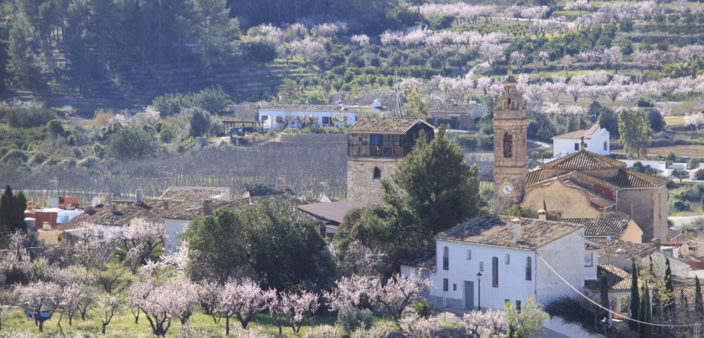 Feslalí- Alcalalí en flor - Alcalalí Turismo