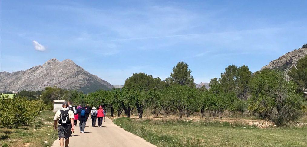 Ciclo de rutas guiadas en Alcalalí turismo