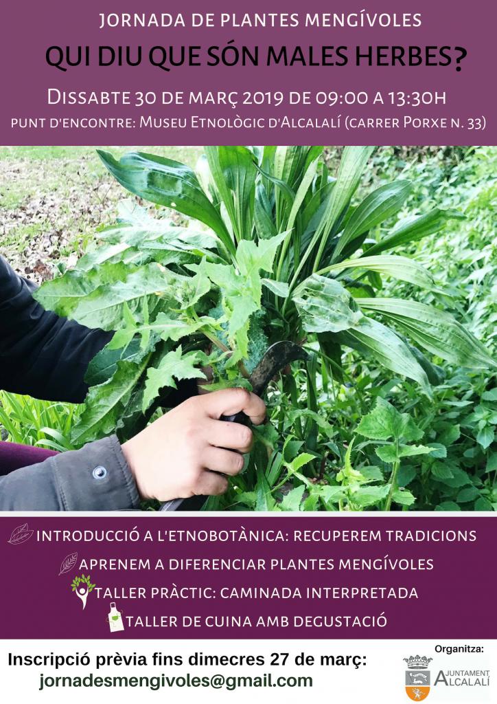 Plantas comestibles en Alcalalí