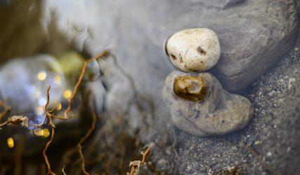 V MARATÓN FOTOGRÁFICA #ALCALALÍENFLOR - TEMÁTICA: RÍO