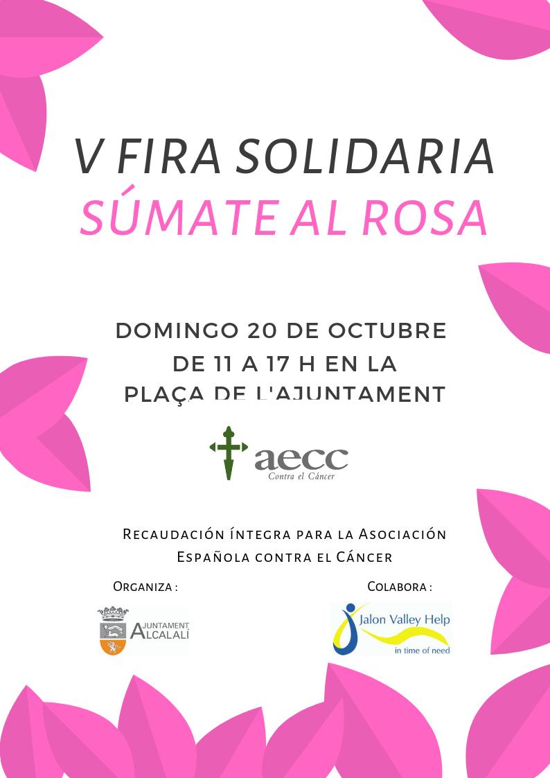 V Feria Solidaria