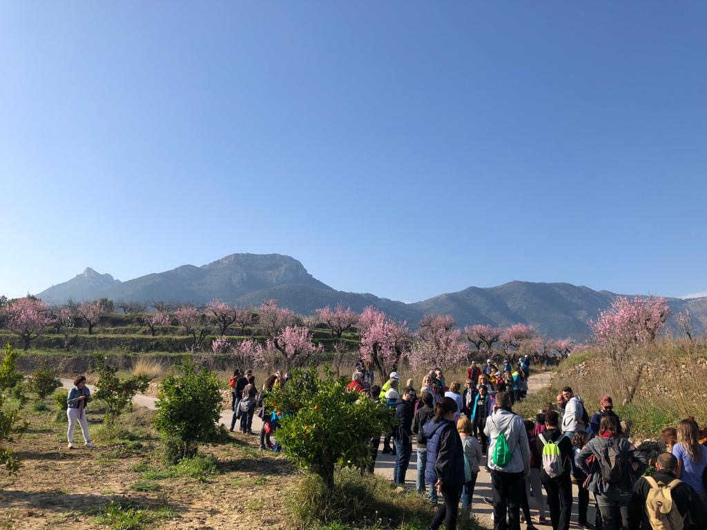 Feslalí, Alcalalí en flor – senderismo